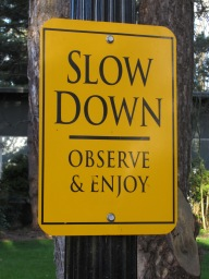 slow_down_sign_reed_college_portland_oregon_2013
